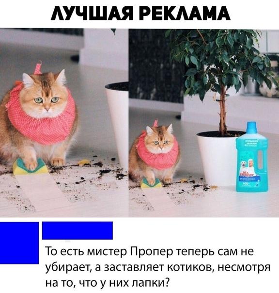 Лучшая реклама