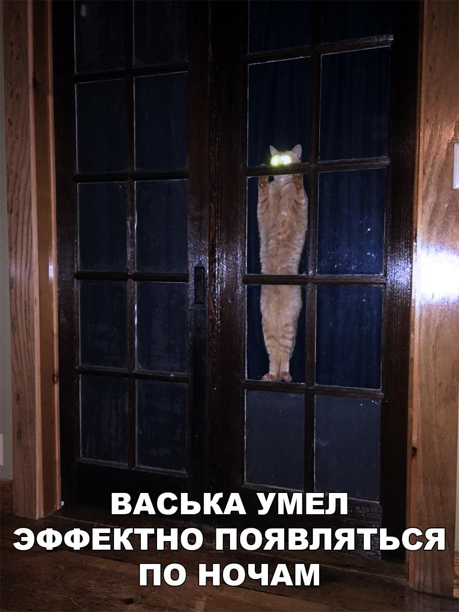 Вот Васька