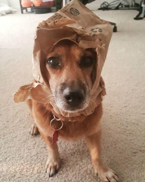 Эта шляпка? А-а, это подарок! Я даже не помню, от кого