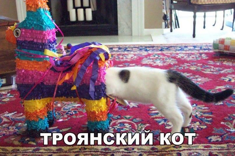 Троянский кот
